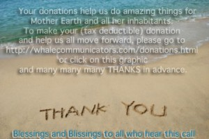 Thank you, your donation means the world to us.