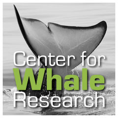 center4whale-research