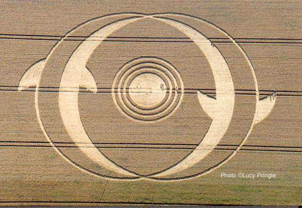 cropcircle-dolphin